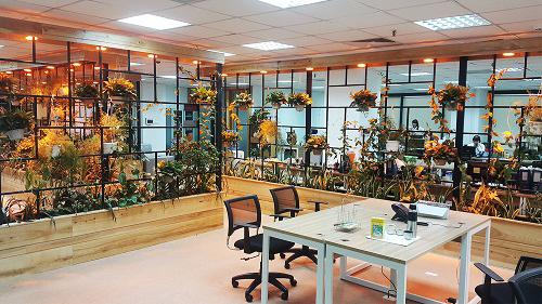 Mẫu thiết kế nội thất văn phòng đẹp tràn ngập ánh sáng và cây xanh ở Hà Nội - 10