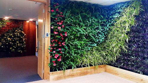 Mẫu thiết kế nội thất văn phòng đẹp tràn ngập ánh sáng và cây xanh ở Hà Nội - 3
