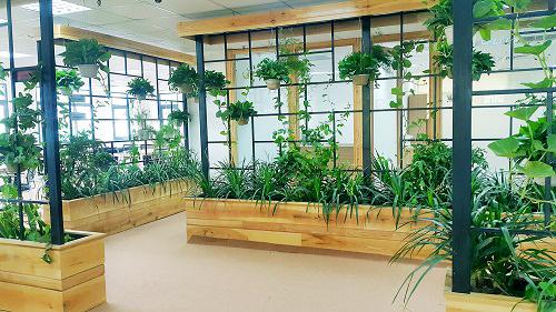 Mẫu thiết kế nội thất văn phòng đẹp tràn ngập ánh sáng và cây xanh ở Hà Nội - 4