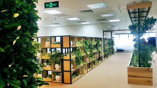 Mẫu thiết kế nội thất văn phòng đẹp tràn ngập ánh sáng và cây xanh ở Hà Nội - 8