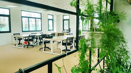 Mẫu thiết kế nội thất văn phòng đẹp tràn ngập ánh sáng và cây xanh ở Hà Nội - 9