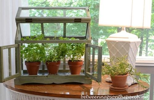Tư vấn thiết kế vườn rau sạch an toàn cho gia đình-4