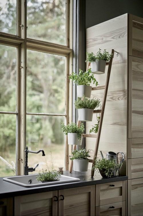 Tư vấn thiết kế vườn rau sạch an toàn cho gia đình-7