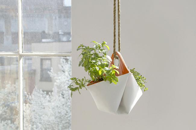 15 mẫu chậu trồng cây hiện đại trang trí cho nhà nhỏ - 02