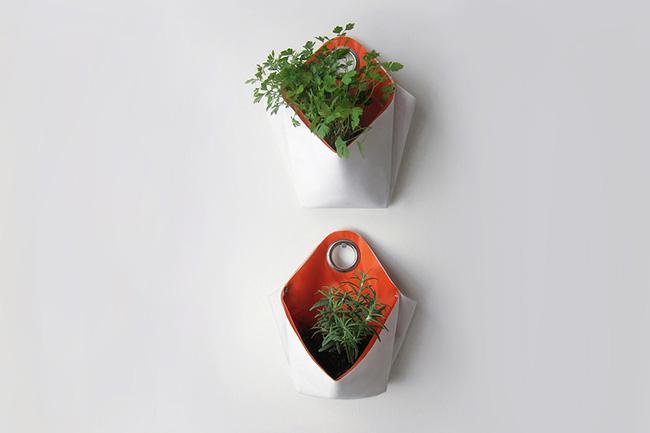 15 mẫu chậu trồng cây hiện đại trang trí cho nhà nhỏ - 03