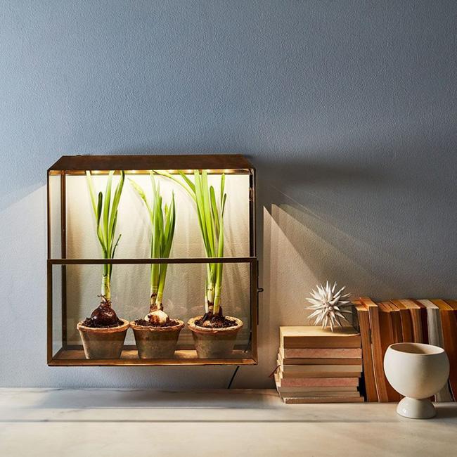 15 mẫu chậu trồng cây hiện đại trang trí cho nhà nhỏ - 04