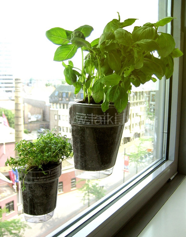 15 mẫu chậu trồng cây hiện đại trang trí cho nhà nhỏ - 08