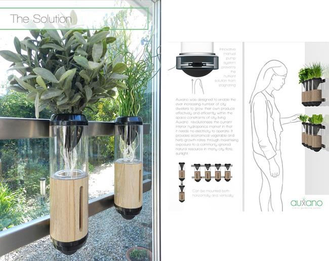 15 mẫu chậu trồng cây hiện đại trang trí cho nhà nhỏ - 14