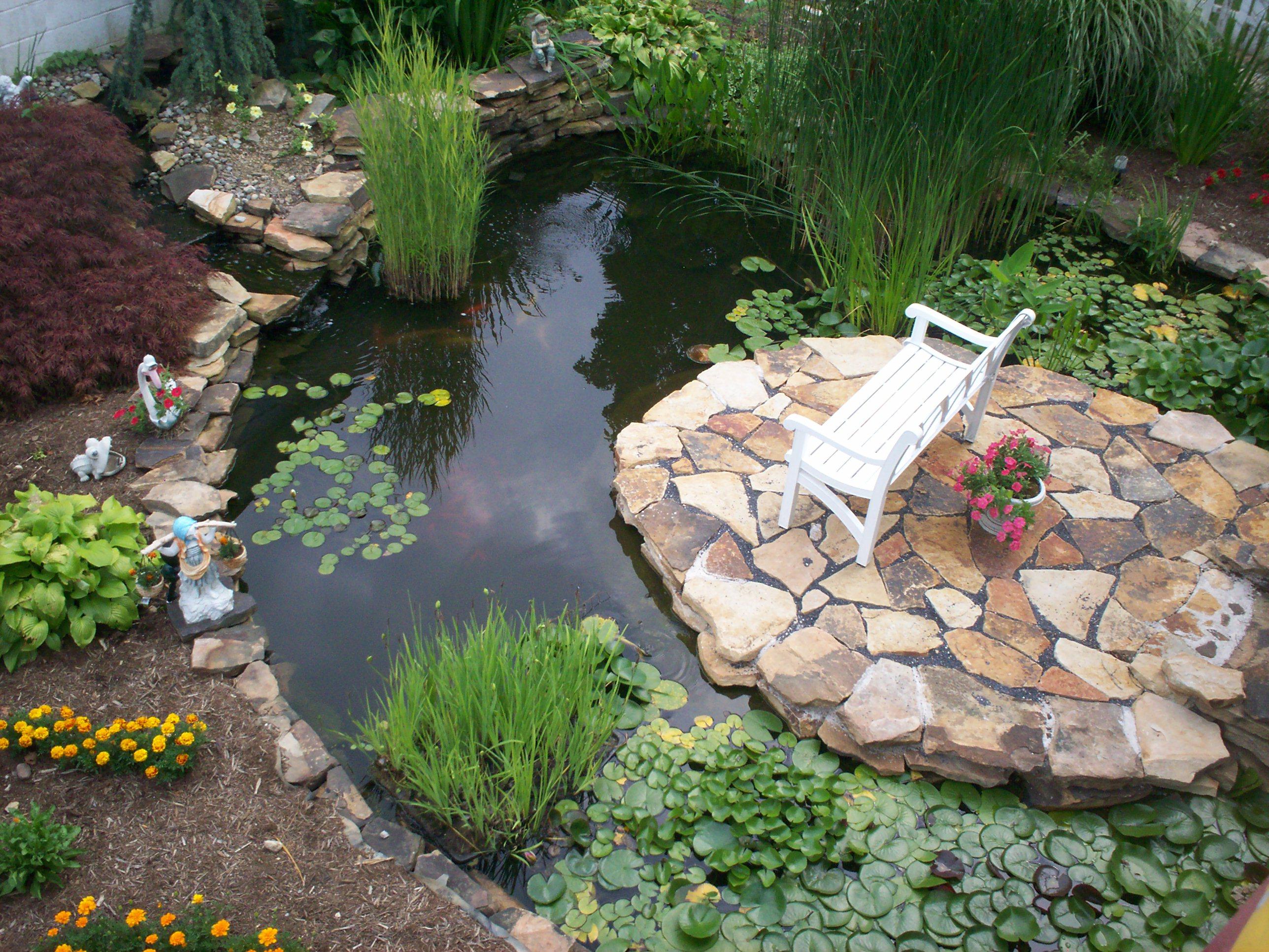Mách bạn cách tự tạo hồ và thác nước ngoài trời đẹp mê
