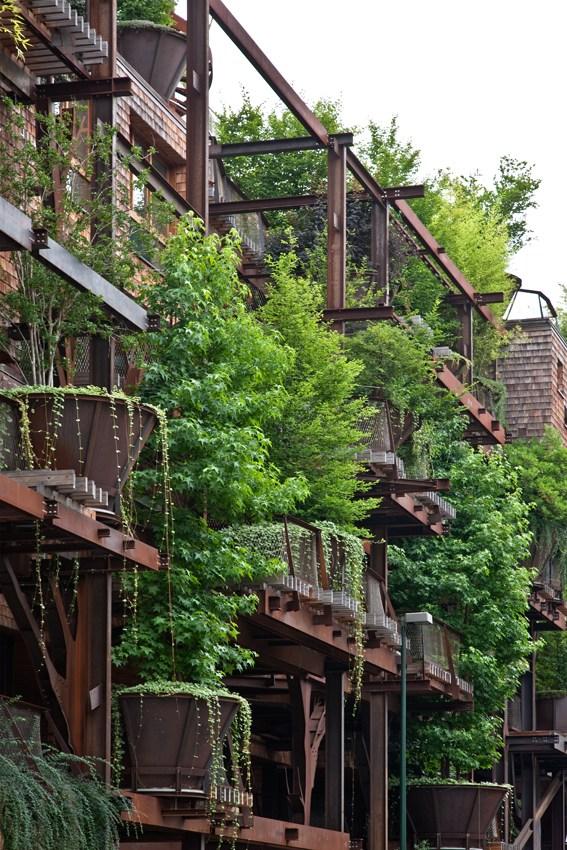 Lạ lùng nhà bằng thép biến hóa như một khu rừng