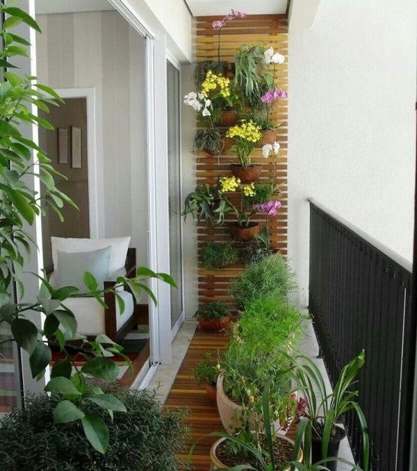 Học cách trang trí ban công tuyệt đẹp với hoa