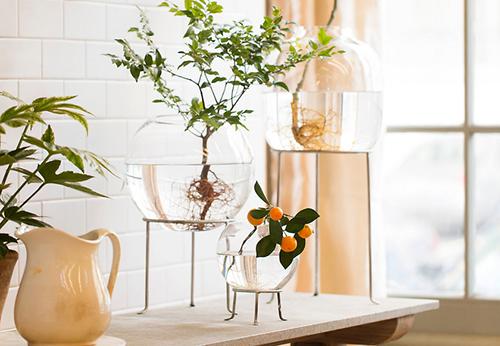 Hé lộ những cách trang trí đơn giản cho khung cửa sổ đẹp hút hồn