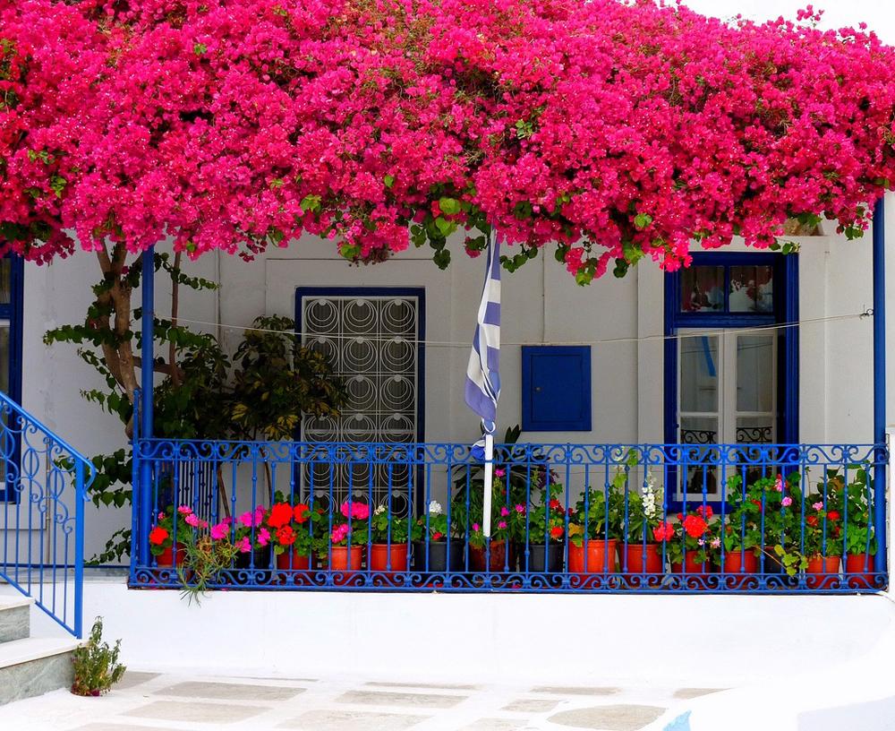 Nhà phố siêu xinh với mẹo trang trí ban công đẹp bằng hoa 01
