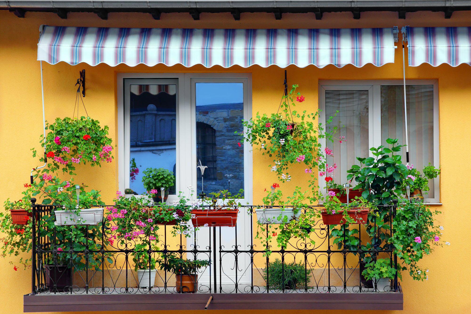 Nhà phố siêu xinh với mẹo trang trí ban công đẹp bằng hoa 02