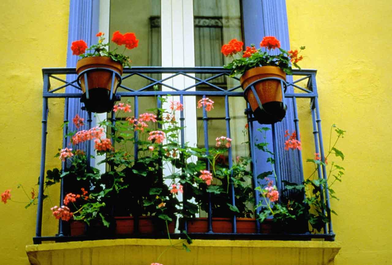 Nhà phố siêu xinh với mẹo trang trí ban công đẹp bằng hoa 03