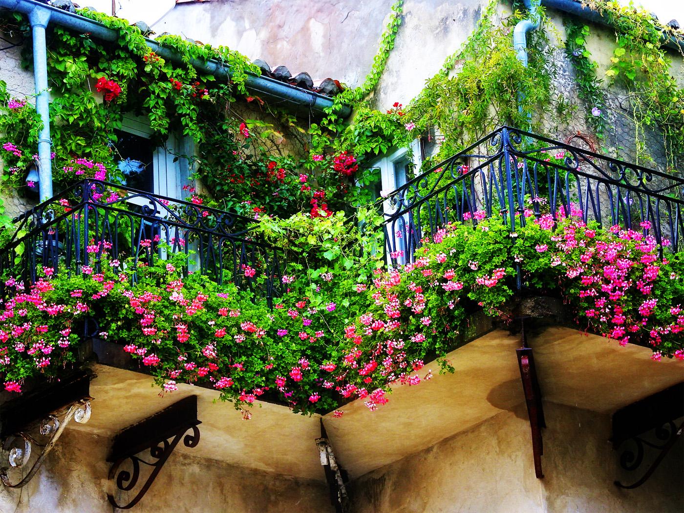 Nhà phố siêu xinh với mẹo trang trí ban công đẹp bằng hoa 05