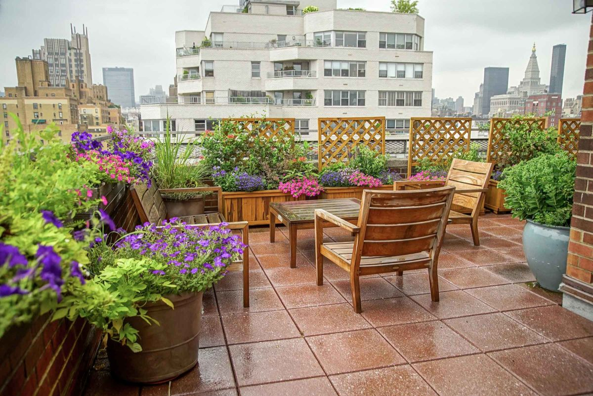 Việc trồng một vườn hoa trên sân thượng rực rỡ sắc màu là một điều hết sức tuyệt vời