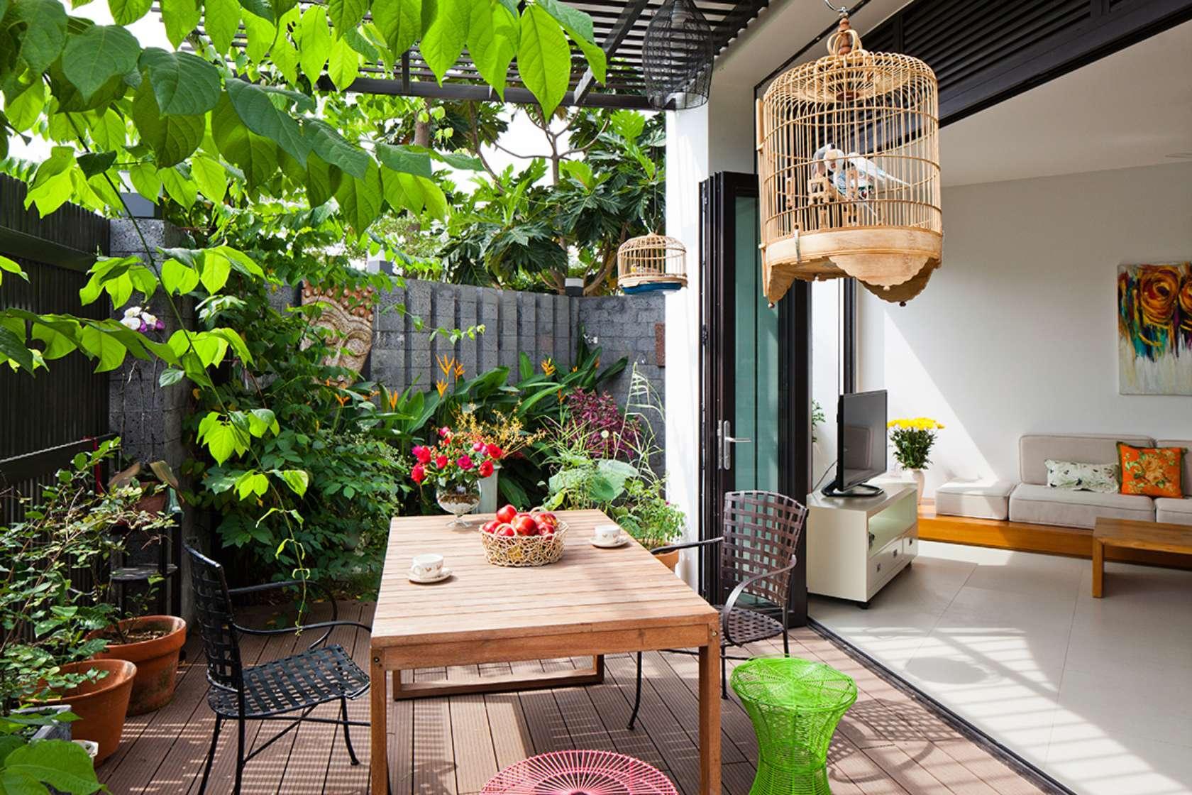 Bạn là người yêu thích thiên nhiên thì việc trồng cây xanh trên sân thượng là một sự lựa chọn hoàn hảo